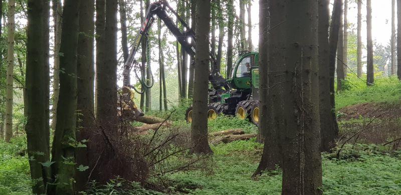 Postreh: Na Slovensku robia nezmyselné legislatívne predpisy z lesníkov naničhodníkov, vyspelá Európa seriózne zachraňuje lesy
