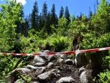 Komentár: Spoločnosť očakáva, že politici budú hľadať medzi vlastníkmi lesov, lesníkmi, ochranármi a ekoaktivistami prieniky, nie prehlbovať konflikty