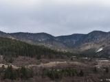 Lesníci sa bránia útokom