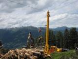 Ako ďalej, Slovenské lesníctvo?