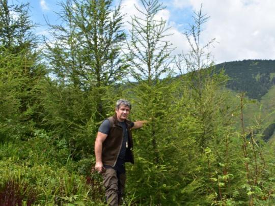 Odborní lesní hospodári sú pre rozvoj vidieka prínosom. Chcú dosiahnuť nezávislosť a rešpekt
