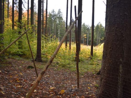 Glosa: Ohrady budú okolo záhrad, polí aj lesov?