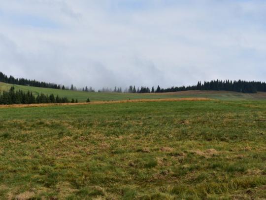 Historický míľnik. Oceňujú ho aj vlastníci lesov