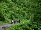 Tatranskí štátni lesníci narátali rekordnú návštevnosť našich veľhôr