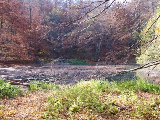 Hranice Karpatských bukových pralesov v pripomienkovom konaní. V Ruskom chcú lesomajitelia lokalitu UNESCO chrániť sami