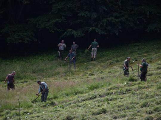 Po experimente s nekosením horských lúk odzvoní aj experimentu s bezzásahom v lesoch?