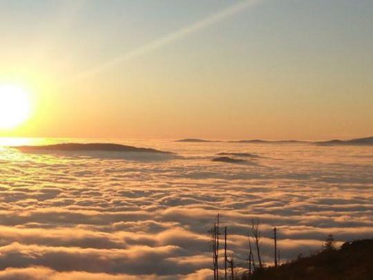 Všimli sme si: Lesnícky vzťah k horám a prírode na fotografiách