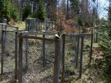 Portál Nasvidiek.sk zverejnil stanovisko platformy Zachráňme lesné bohatstvo Slovenska: Postavte sa za lesnícku pravdu!