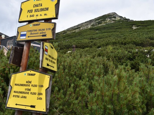 Glosa: Pygmejovia majú s ochranármi rovnaké problémy ako Slováci
