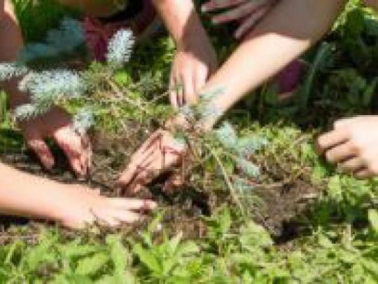 Deň Zeme si pripomenú Stromkovou slávnosťou