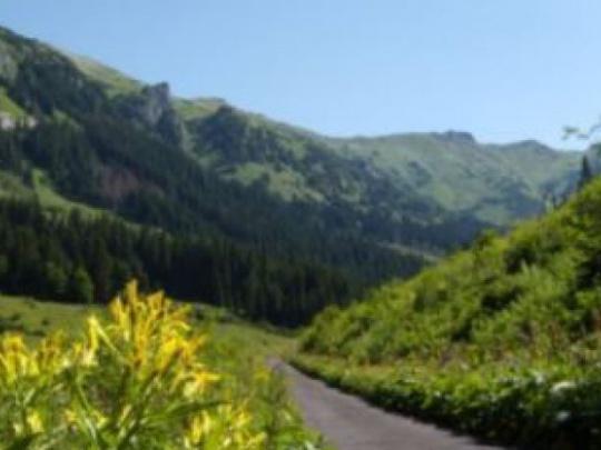 Európsky deň národných a prírodných parkov