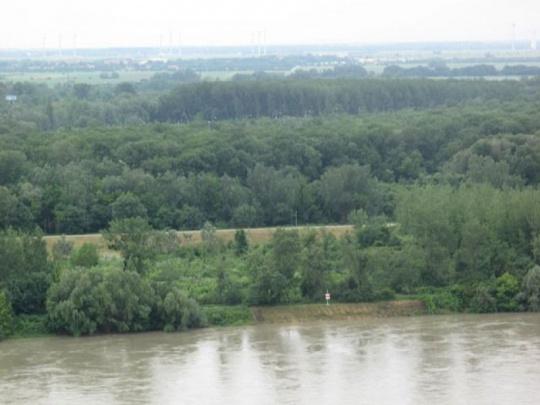 Mesto chce štátne lesy