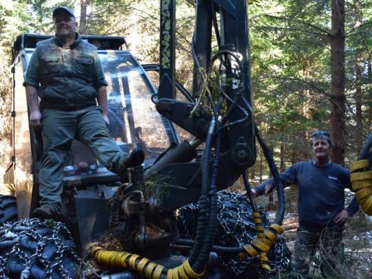 Postreh: Ľudia, ktorí pracujú v lese hovoria, že neplašia zver a vtáky