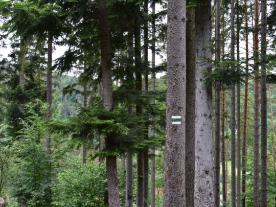Mikroregión Terchovská dolina za prírodný, nie národný park