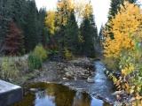 Bývalý ekologický aktivista viní z povodní lesníkov. Vedci argumentujú inak - odborne