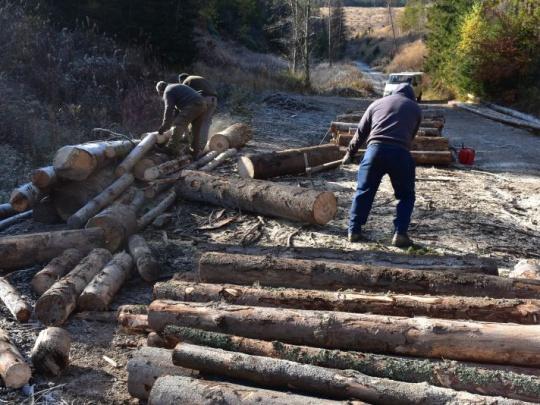 Krádežiam dreva v Slovenskom raji odzvonilo