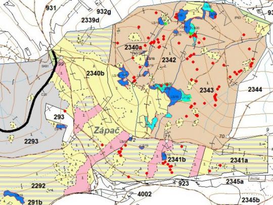Príklad z Javorníkov: Ak chceme zachovať zelené lesy, nutný je aktívny prístup, nie ničnerobenie