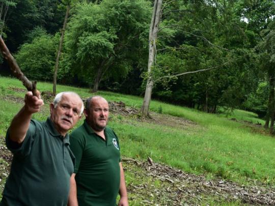 Verejné vypočutie kandidátov na šéfa štátnych ochranárov: Aby kvitli národné parky, nie ŠOP