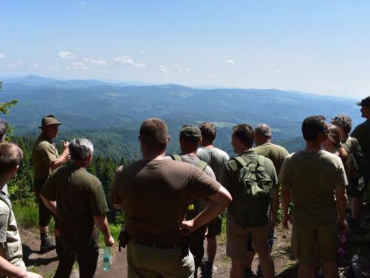 Komentár: Keď sa lesníci a ochranári dohodnú