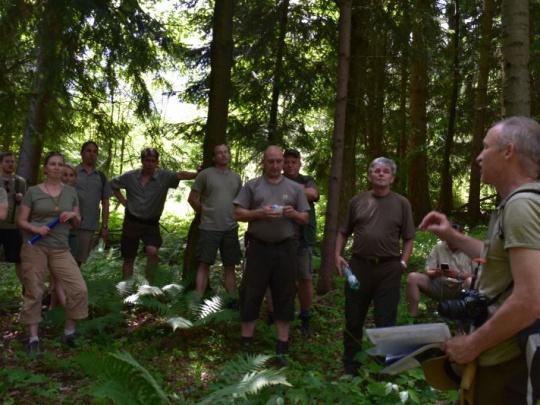 ZMOS zisťuje postoje samospráv ku mestským a obecným lesom