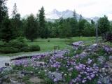 Zavreli sa brány botanickej záhrady
