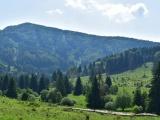 ÚNIA o skúsenostiach zo súžitia človeka a vlka v Rakúsku, Bavorsku a južnom Tirolsku: Poučme sa, aby kvôli vlkovi a politickému egu netrpel slovenský vidiek