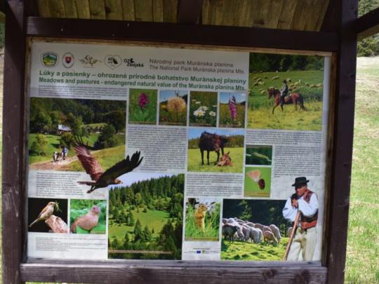 Názor: Zoštátnenie lesnej pôdy v národných parkoch? Vyvolá ešte väčšie rozbroje, nenávisť a konflikty