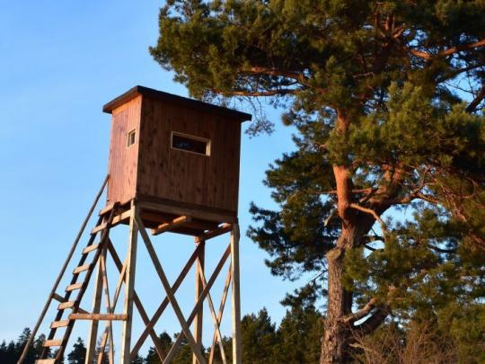 Slovenská poľovnícka komora: Chceme predchádzať svojvoľnému neetickému konaniu niektorých držiteľov poľovných lístkov