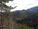 Predám podiely lesa v Slovenskom raji