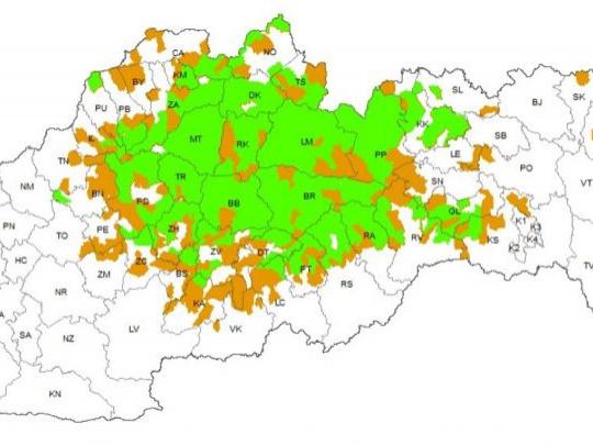 Koľko máme medveďov na Slovensku? Prvý exaktný údaj priniesol genetický výskum v roku 2014: 1 256 jedincov