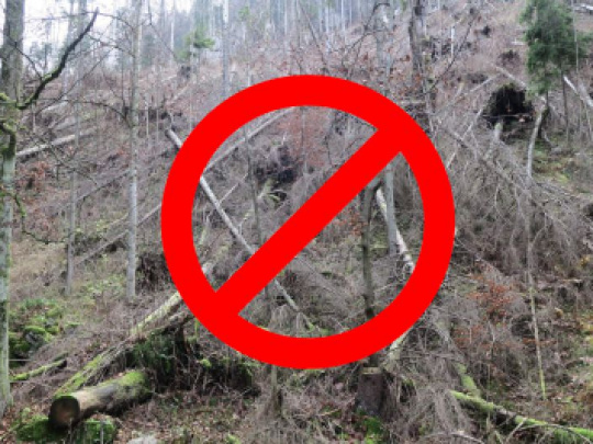 Vlastníci lesov: Odmietame reťaze ochranárskeho nevoľníctva na vidieku. Pôdu si nedáme!